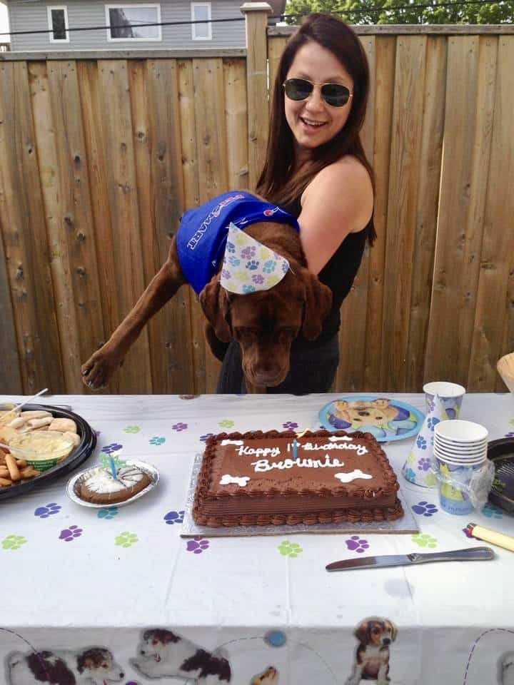 Let It Go And Move On Woman Holding Dog Wearing a Party Hat To Blow The Candle on The Birthday Cake